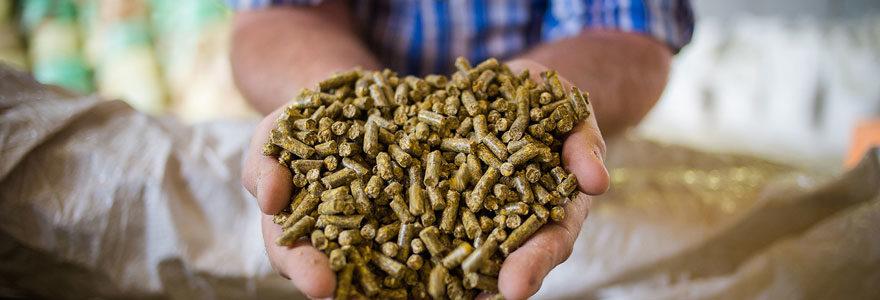 Produits nutritifs pour élevage d'animaux